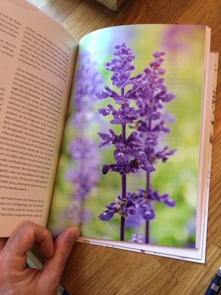 Ein Bestseller, der mit viel Liebe von Maria geschrieben und vom Verlag toll gestaltet ist.